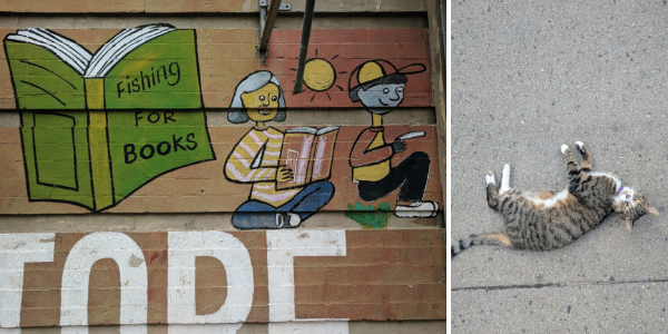 "street mural that says ""fishing for books"" and a neighborhood cat"