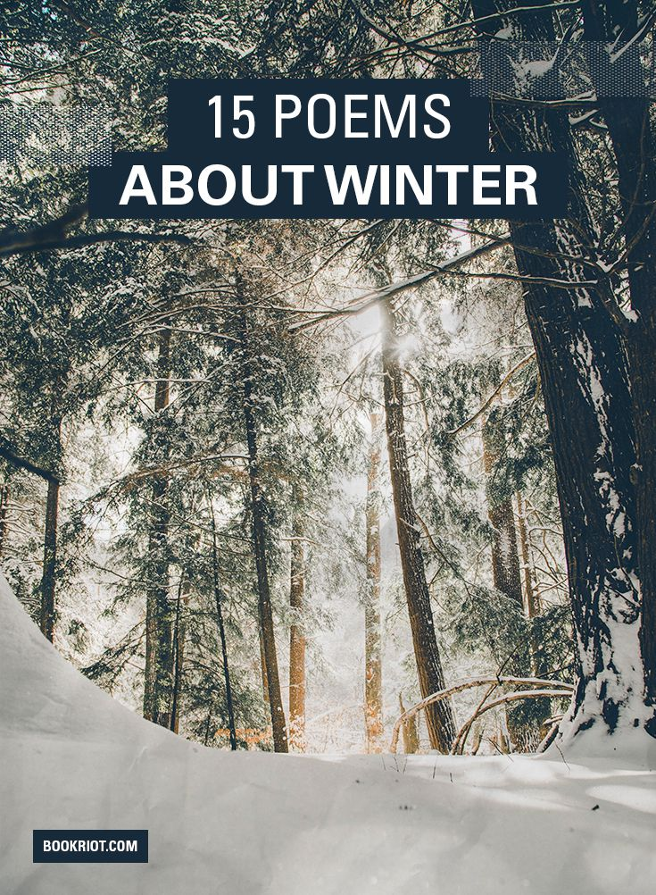 15 Reflective Winter Poems For Cold Nights