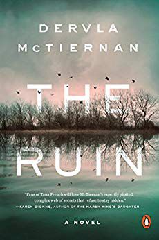 The Ruin by Dervla McTiernan cover image