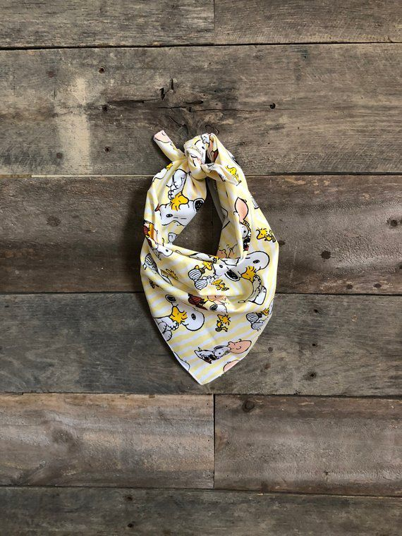 picture-of-charlie-brown-dog-bandana