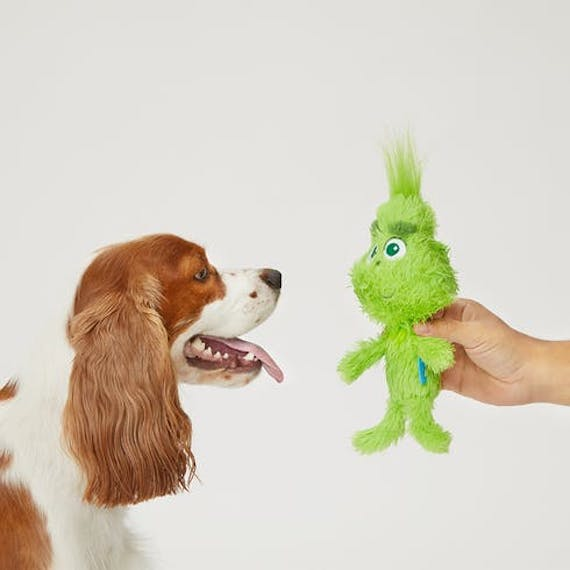 picture-of-the-grinch-dog-toy