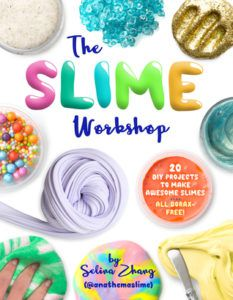 he slime workshop book cover by Selina Zhang