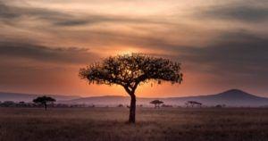 African fantasy novels