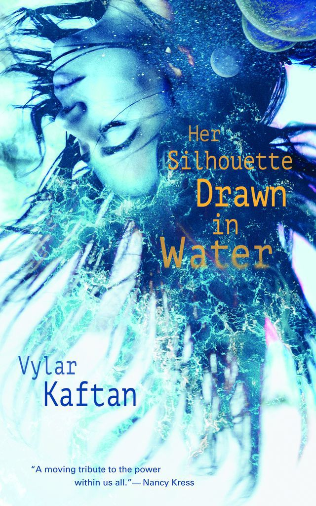 Her Silhouette Drawn in Water book cover
