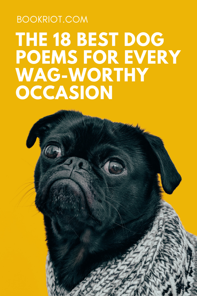 The 18 Best Dog Poems for Every Wag-Worthy Occasion | Book Riot