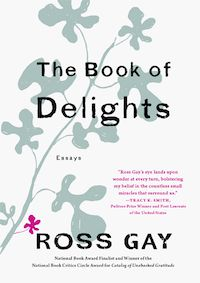 The Book of Delights cover