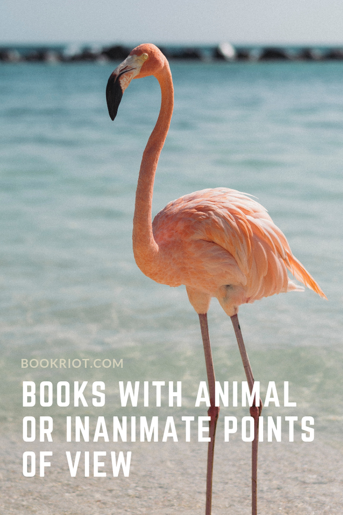 Pick up a book with an animal or inanimate point of view and change your perspective. book lists | read harder books | read harder challenge books | books with animals | books from an animal's point of view