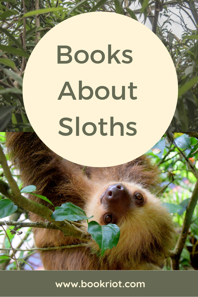 books about sloths