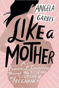 Like a Mother book cover