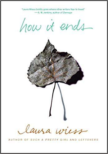 How it Ends by Laura Wiess cover image
