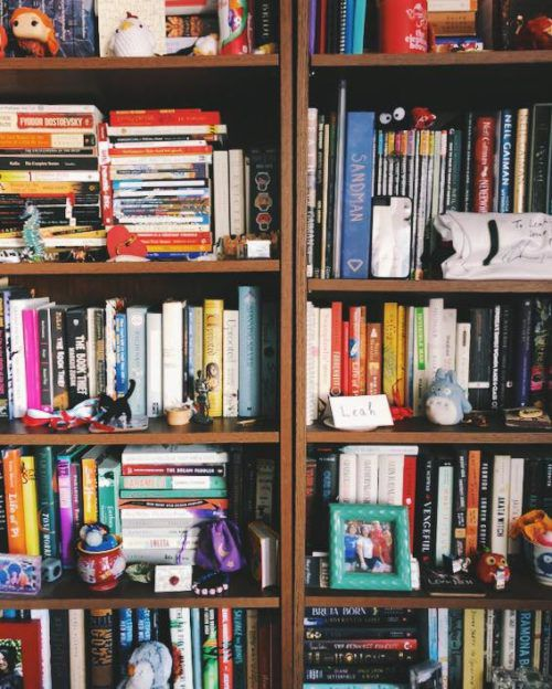 Leah Rachel von Essen's Bookshelves