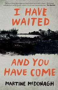I Have Waited And You Have Come by Martine McDonagh