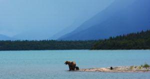Alaska feature