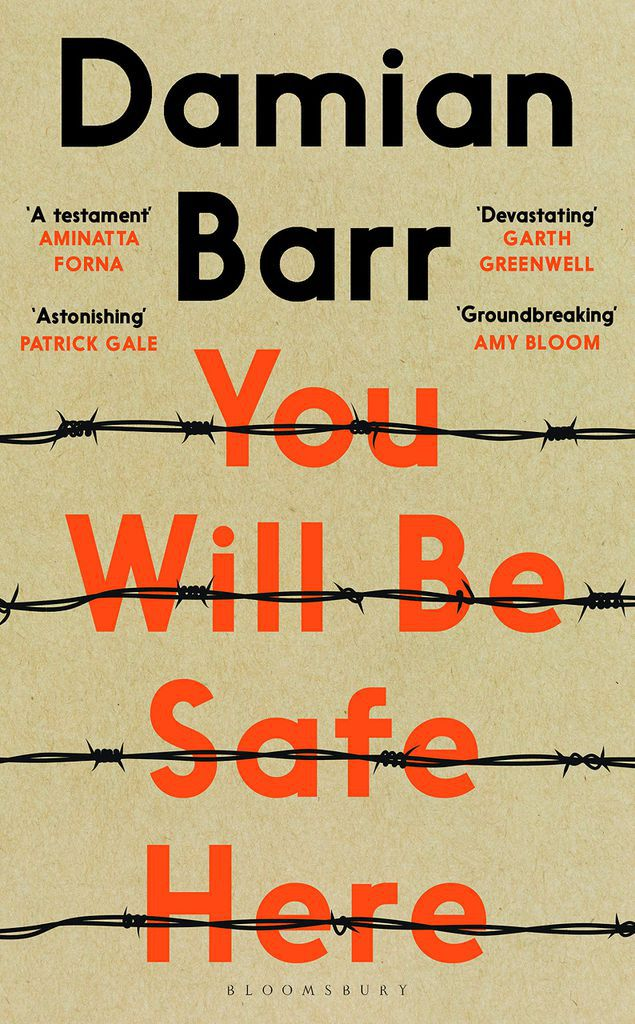cover of You Will Be Safe Here by Damian Barr