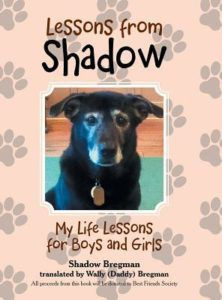 lessons from shadow by shadow bregman