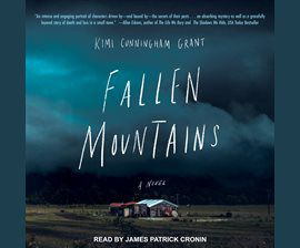 Fallen Mountains audiobook cover image