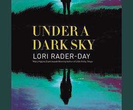 Under A Dark Sky audiobook cover image