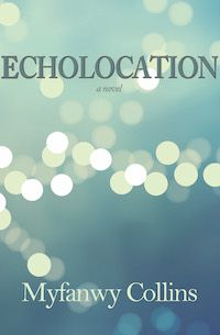 Echolocation book cover from Indianapolis press Engine Books.
