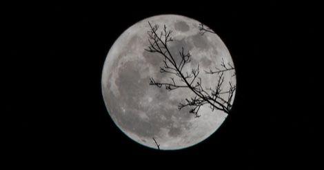moon evening night horror feature
