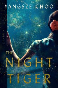 cover of the night tiger by yangsez choo