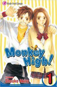 Monkey High cover