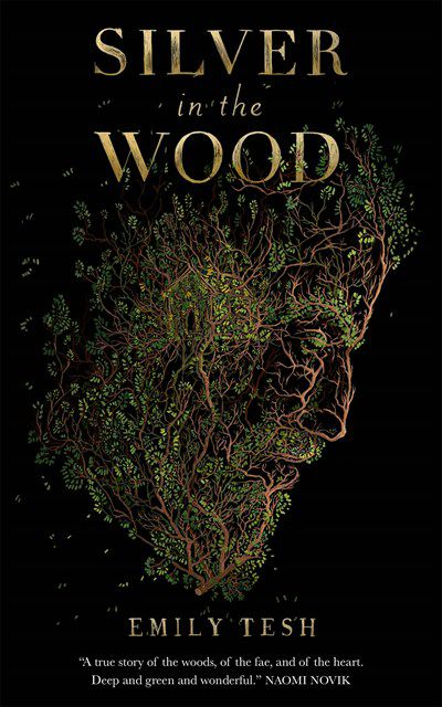 Cover of Silver in the Wood by Tesh