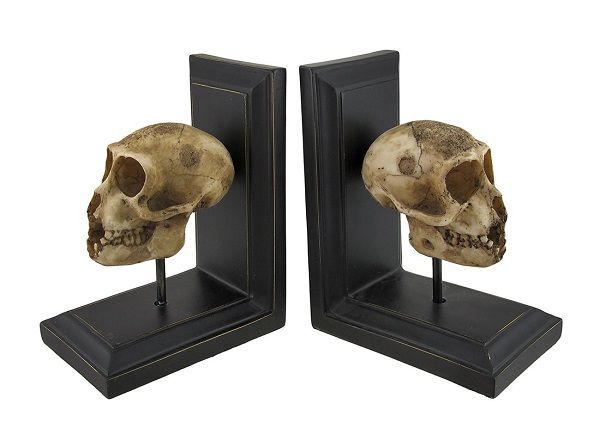 Neanderthal skull bookends