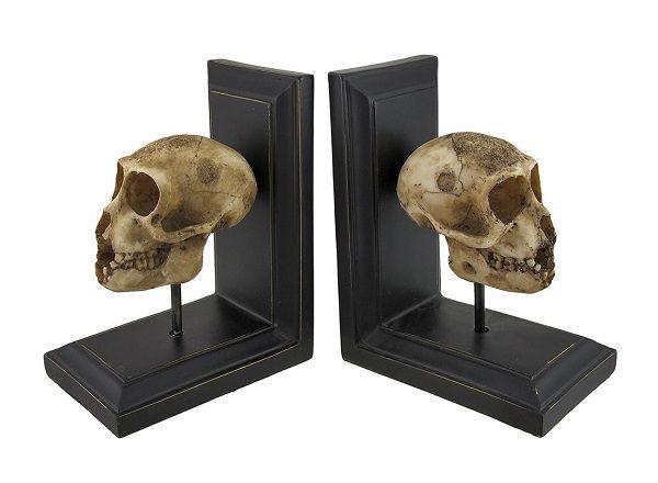 Neanderthal skull bookends