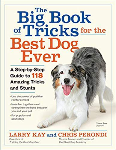 The Big Book of Tricks for the Best Dog Ever: A Step-by-Step Guide to 118 Amazing Tricks and Stunts book cover
