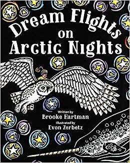 Dream flights on arctic nights book cover