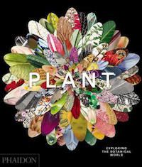 Plant Exploring the Botanical World Book Cover
