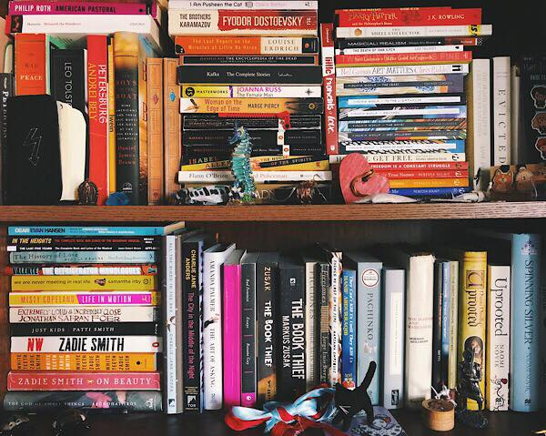 How to Handle a Lot of Books in a Small Apartment