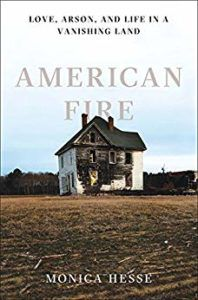 American Fire by Monica Hesse cover