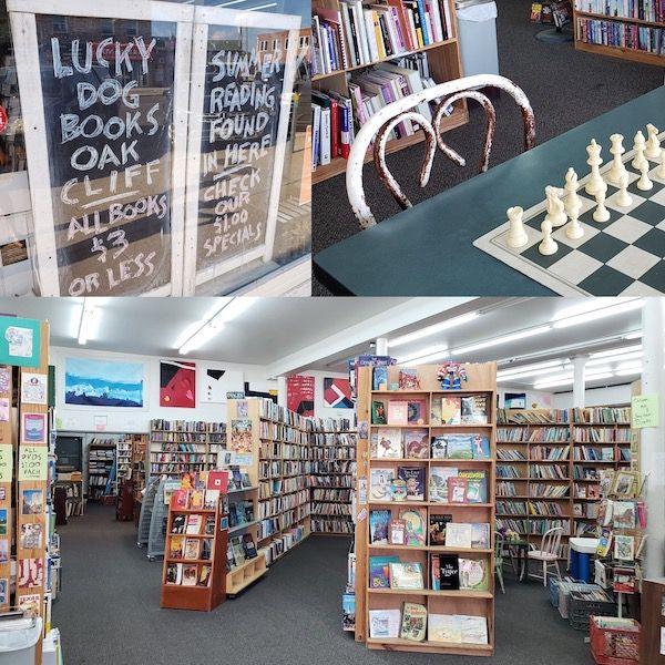 Dallas Literary Scene: Lucky Dog Books