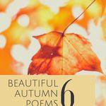 Tis the season for beautiful autumn poetry. poetry   poems about fall   autumn poems   poems to read