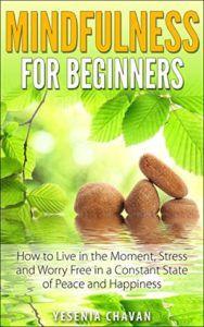 Mindfulness For Beginners by Yesenia Chavan
