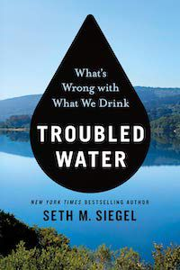 Troubled Water: What's Wrong with What We Drink? by Seth M. Siegel book cover