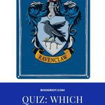 Discover your Ravenclaw counterpart with this Harry Potter quiz. quizzes | harry potter quizzes | quizzes for ravenclaws | bookish quizzes