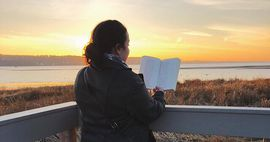 A woman facing away in front of a sunset, reading