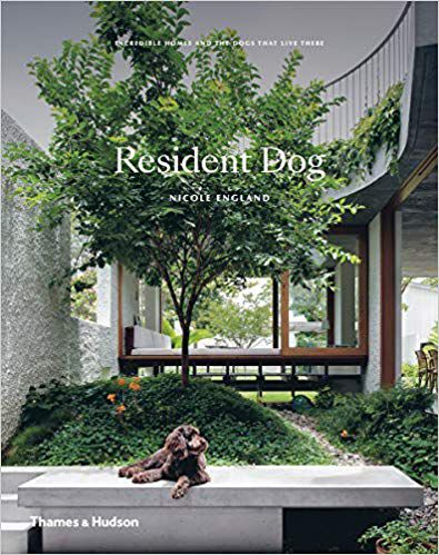 Resident Dog book cover