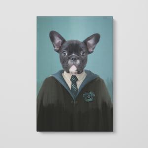 Harry Potter Pet Portrait