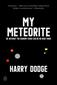My Meteorite by Harry Dodge cover