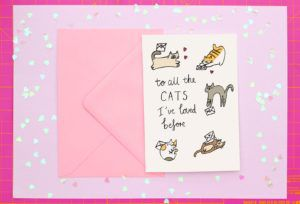 To All the Cats I've Loved Before card