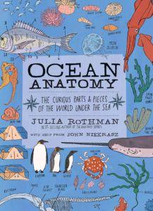 Ocean Anatomy by Julia Rothman