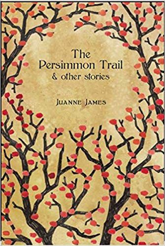 Stories of New Orleans: The Persimmon Trail and Other Stories book cover