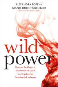 Wild Power cover