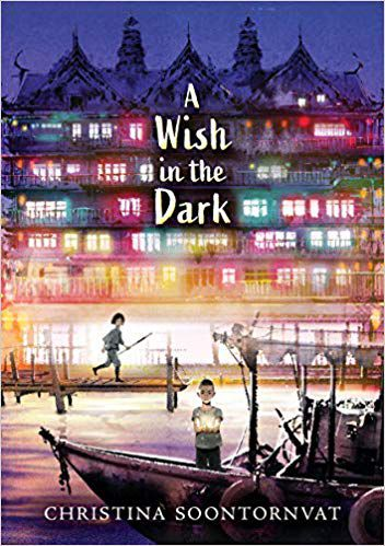 A Wish In The Dark Book Cover