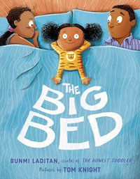 cover image of the big bed picture book