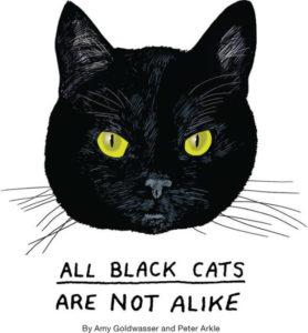 Todos os gatos pretos não são iguais por Amy Goldwasser