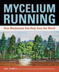 Mycelium Running by Paul Stamets e1594664082677.jpg.optimal
